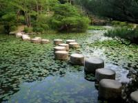 Deepening Spiritual Practice 2020: Life As Spiritual Practice and Spiritual Sources