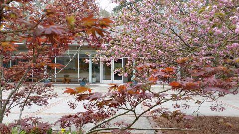 campus.springfoliage.ERUUF